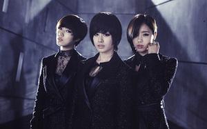20111116_crycry_tara_group_11